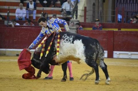 David de Miranda con el segundo de su lote. Foto: Enrique Romero