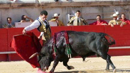 triguereno-bernardinas-percance-primero-lote_1362174575_101135380_667x375